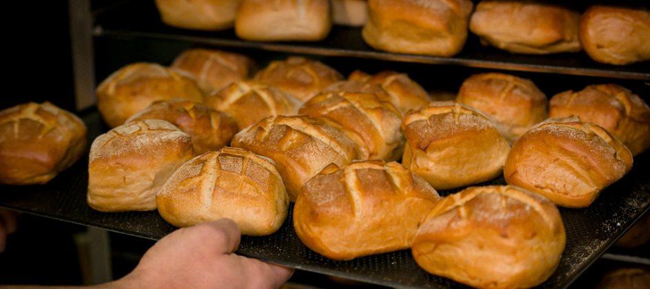 Blech mit Brötchen beim in den Ofenschieben