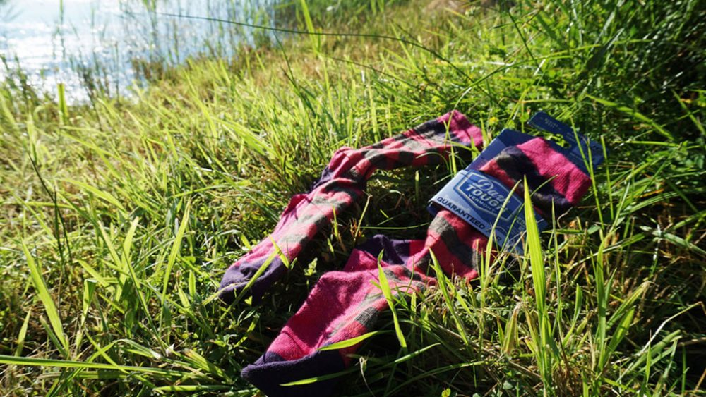 Socken im Gras